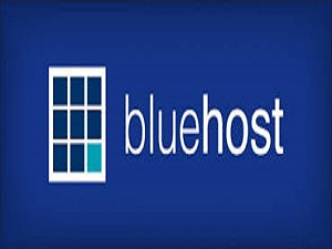 how to find server ip address cpanel bluehost