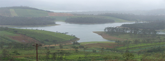 Avalanche lake tourist places ooty