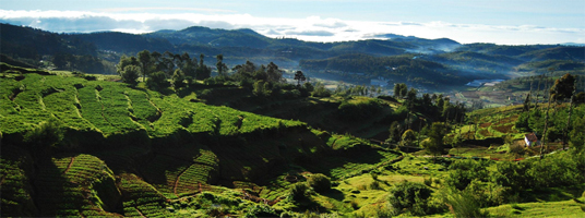 ketti valley tourist place in ooty