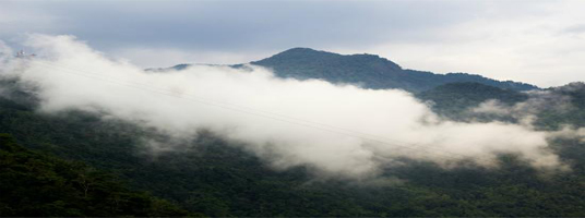 lakkidi tourist places in wayanad