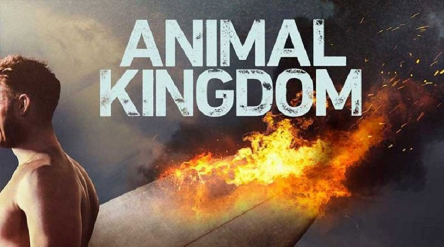 Animal Kingdom Season 5 Release Date