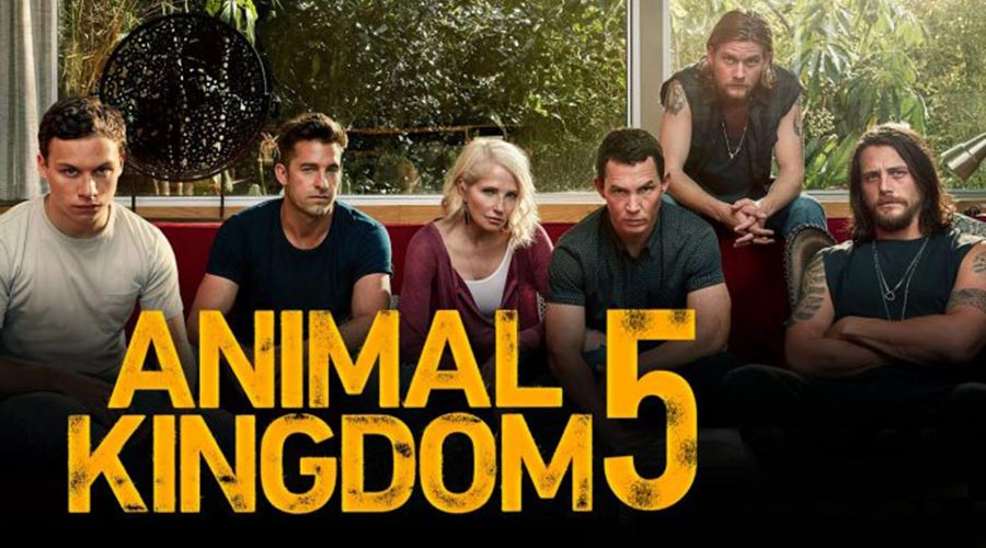 Animal Kingdom Season 5 : Release Date, Cast, Plot, And All Major Updates! - Best Toppers