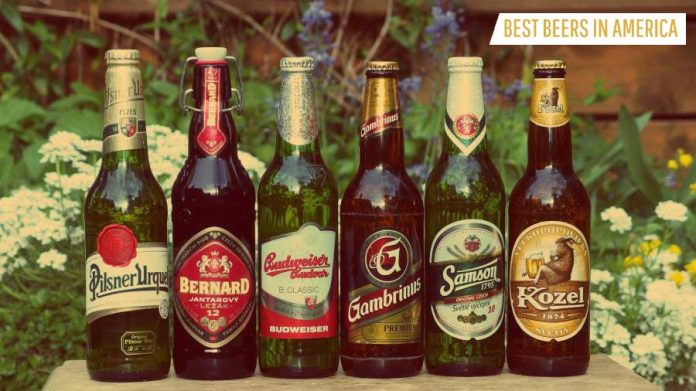 Most Popular Beers in America