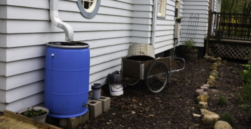 Collection Of Rainwater